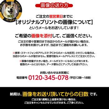 ゴルフマーカー名入れ画像・写真プリントカジノチップマーカー(カジノマーカー)8