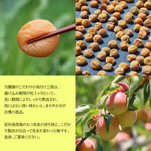 紀州南高梅梅干ゴルフうめ〜4