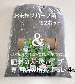 【送料無料】おまかせハーブセット&肥料の入ったハーブ専門店の培養土5L×4袋【北海道&沖縄送料一部負担540円】
