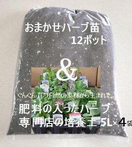 おまかせハーブセット12種と肥料の入ったハーブ専門店の培養土5L×4袋 園芸用品 ブレンド用土 園芸用土 ハーブ苗専門店
