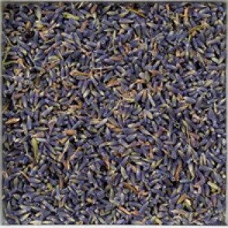 라벤더 EX 블루 (라벤더) 벌크 허브 꽃 (꽃) Lavender