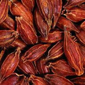 100g単位量売 クチナシ コモンガーデニア バルクハーブ シングルハーブ クッキング 香辛料 色付け 栗きんとん 染色 ベリー 実 Common Gardenia
