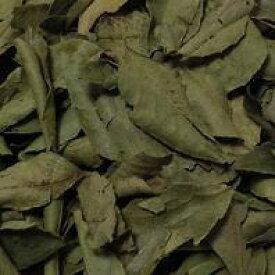 100g単位量売 カレーリーフ バルクハーブ シングルハーブ クッキング 香辛料 リーフ 葉 Curry Leaf