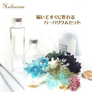 ハーバリウム キット 花材 セット 選べるボトル2本 ピンセット オイル250ml フルーツとブルーの花材入り 入門キット