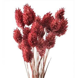 大地農園/ポアプランツ 15g クラシックローズ/42020-230 プリザーブドフラワー 花材 大地農園:ドライフラワー スモールフラワー ポアプランツ