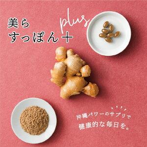 送料無料|美らすっぽんPlus 4週間分|安心の日本製サプリ スッポン やんばる生姜 妊活 産後ケア アミノ酸 DHA EPA 飲みやすいソフトカプセル