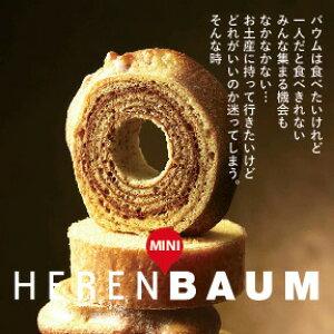 バウムクーヘン ハードタイプミニ バームクーヘン 保存料不使用 内祝 お返し