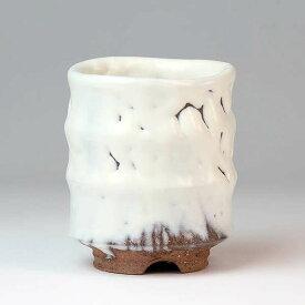 萩焼(はぎやき) 白釉 湯呑【湯呑み ゆのみ ユノミ 湯飲み 湯飲