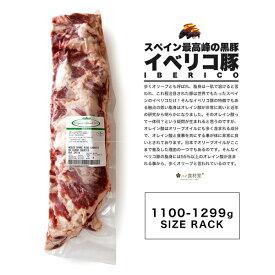 イベリコ豚スペアリブ【1100-1299g】BBQの王様骨付き肉スペアリブお届けします!【冷凍のみ】 肉 イベリコ スペイン バーベキュー ホームパーティー 骨付き 豚