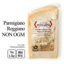 パルミジャーノ・レッジャーノ・14ヶ月熟成 【約1kg~1.2kg】【冷蔵/冷凍可】NON-MGO