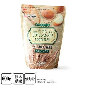 九州 小麦粉 強力粉 ミナミノカオリ 【600g】