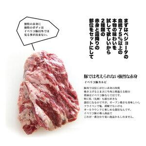 【送料無料】4年ぶりの解禁!イベリコ豚増量計画集大成!ドカンっと合計1200gでお届け!イベリコ豚の赤身と霜降りのセット800gとイベリコ豚しゃぶしゃぶ200g×2枚でお届けいたします!イベリア半島原産種血統75%以上のイベリコ豚となります。【800g】【冷凍のみ】