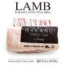 NZ産熟成スプリングラムラック(ラム骨付きロース ラム肉 リブロース)(最も栄養価が高い1月〜3月に限定生産!約4週間…