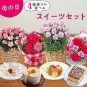 【日比谷花壇】母の日 花 ギフト プレゼント 4種類から選べるお花とスイーツのセット
