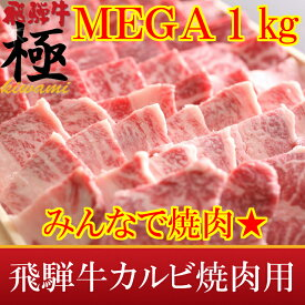 MEGA盛り1kg★がっつり系★極上飛騨牛カルビ焼肉用【RCP】10P01Mar15【TOKAI20140802】