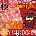 【バーベキューセット】THE焼肉★ギガ盛り1.2kg量より質!BBQセット飛騨牛赤身と脂身両方楽しめる 【RCP】 【日曜営業】 【土曜営業】…