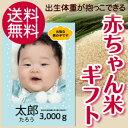 Baby b1 1