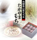 Takayamamoti 1