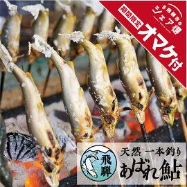 飛騨の暴れ鮎天然鮎中サイズ5匹天然アユ鮎岐阜県宮川下流