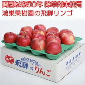 飛騨リンゴ 【令和元年度 販売開始】 鴻巣果樹園 岐阜 飛騨りんご詰合せ 5kg ジュースお菓子ジャム用 高山 リンゴ 訳あり