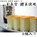 送料無料 御菓子司 松野屋 地酒ケーキ 6個入 養老 玉泉堂 醴泉