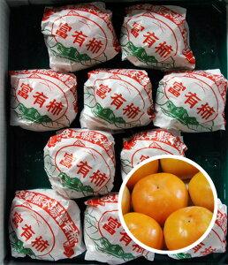 送料無料 野々村さん家の甘くて濃い富有柿 一番大きい!一番キレイ! 秀品 3L 10玉 個包装 ご進物に!