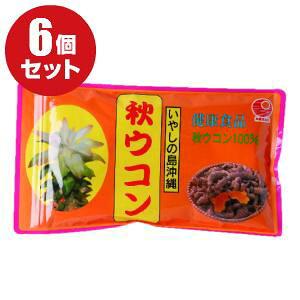【送料無料】秋ウコン粉(袋入)100g×6個セット(ターメリック)|クルクミンたっぷりの秋ウコンの粉末!簡易包装の袋入で買い得|