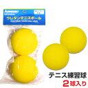 KAWASAKI ウレタンテニスボール 練習球 ジュニア向け(キッズ向け) 2個入