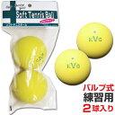 ソフトテニスボール練習球 セーフティバルブ式 2個入 (カラー/イエロー)