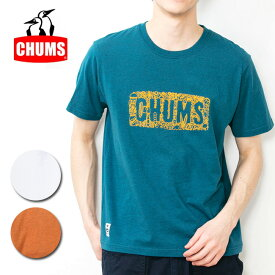 CHUMS チャムス CHUMS Beach T-Shirt チャムスビーチTシャツ CH01-1515 【アウトドア/日本正規品/Tシャツ/メンズ】【メール便・代引不可】