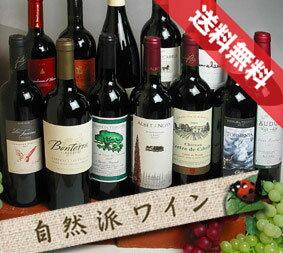 ■□送料無料□■ 有機な赤ワインセットフルボトル12本セットVer.11 世界からど〜んとお届け【自然派ワイン ビオワイン 有機ワイン 有機栽培ワイン bio オーガニックワインセット】【赤ワインセット】