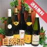 【送料無料】アルザス飲み比べ白ワイン5本セット【白S】