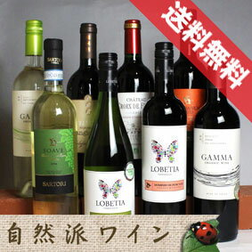 ■送料無料■自然派赤白ワイン・ベーシック 飲み比べ8本セットVer.3 送料込み機関認証有機ワイン・有機栽培ワインも入っています!【赤ワインセット】【自然派ワイン ビオワイン 有機ワイン bio オーガニックワインセット】【楽天 通販 販売】