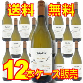 【送料無料】 テラノブレ シャルドネ レセルバVS  12本セット・ケース販売 Terra Noble Chardonnay Reserva VS チリ/チリワイン/白ワイン/辛口/750ml×12【ケース売り】