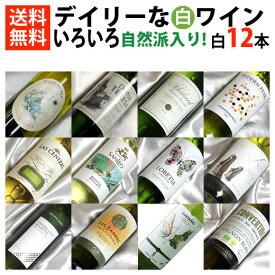 ■□送料無料□■ 自然派ワイン2本入り 白ワインがイロイロ12本セット 【飲み比べS】【白ワインセット】【送料込み・送料無料】【楽天 通販 販売】