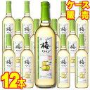 【送料無料】【サントネージュ ワイン】 梅ワイン 720ml×12本セット・ケース販売 日本ワイン/甘味果実酒/やや甘口/7…