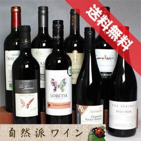 ■送料無料■自然派赤ワイン・ベーシック 飲み比べ8本セットVer.5 機関認証有機ワイン・有機栽培ワインも入っています!【赤ワインセット】【自然派ワイン ビオワイン 有機ワイン bio オーガニックワインセット】【楽天 通販 販売】