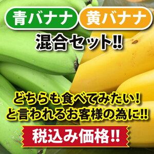 【皮ごと 国産バナナ】ひかりバナナ青バナナ&黄バナナ混合10本セット