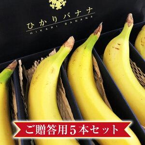 【皮ごと 国産バナナ】ひかりバナナご贈答用 5本セット