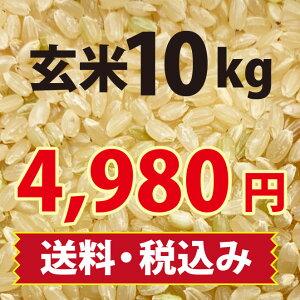 【農薬、除草剤を使わずに育てたお米です】玄米10kg 【新米】【送料無料・精米無料】特別栽培 令和3年産 山口県産