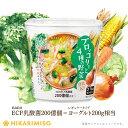 VEGE MISO SOUP ブロッコリーと4種の野菜×6カップ豆乳入り nanoEC乳酸菌200億個入 即席みそ汁 カップ味噌汁 インスタント 簡単 便利 即席 手軽 ランチ 洋風みそ汁 野菜 栄養