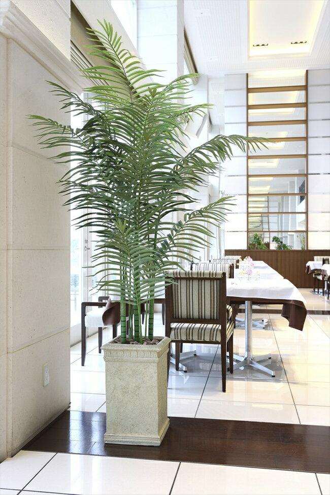 光触媒 光の楽園 大型 人工観葉植物トロピカルアレカパーム 高さ2.0m