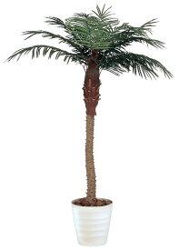 光触媒 観葉植物 光の楽園 フェニックス 高さ2.1m【人工観葉植物 大型 インテリアグリーン】