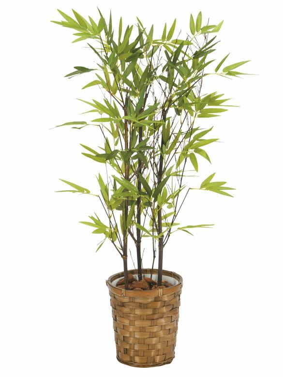 光触媒 観葉植物 光の楽園黒竹 高さ75cm【インテリア フェイクグリーン 人工観葉植物 バンブー】