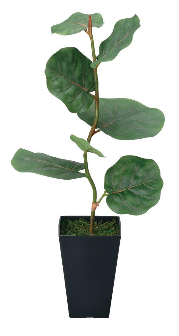 光触媒 光の楽園 シーグレープ 高さ55cm【インテリアグリーン 人工観葉植物】