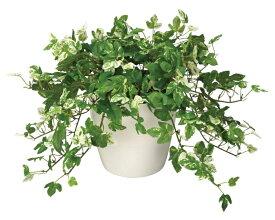 光触媒 観葉植物 光の楽園アンペロシスアイビー造花 人工観葉植物