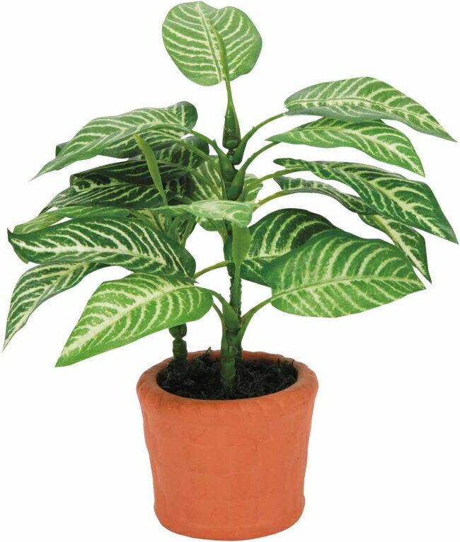 光触媒観葉植物 光の楽園 カントリーゼブラ【インテリアグリーン 人工観葉植物】