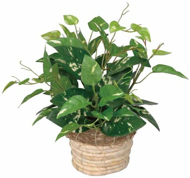 光触媒 光の楽園 ミニポトス 【インテリア ミニグリーン 人工観葉植物 】
