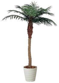 光触媒 光の楽園 フェニックス 高さ1.8m【インテリアグリーン 人工観葉植物 アジアン 南国風 大型】