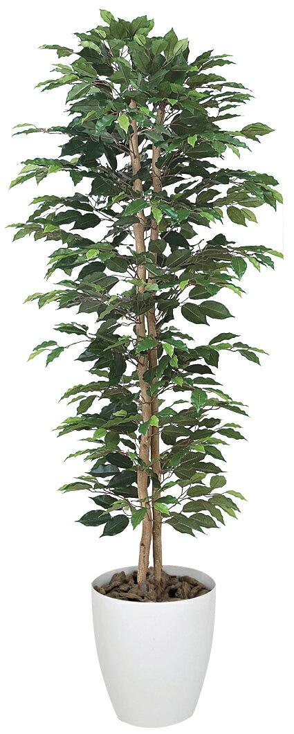 光触媒 光の楽園ベンジャミンスリム 1.6m【インテリアグリーン 人工観葉植物】
